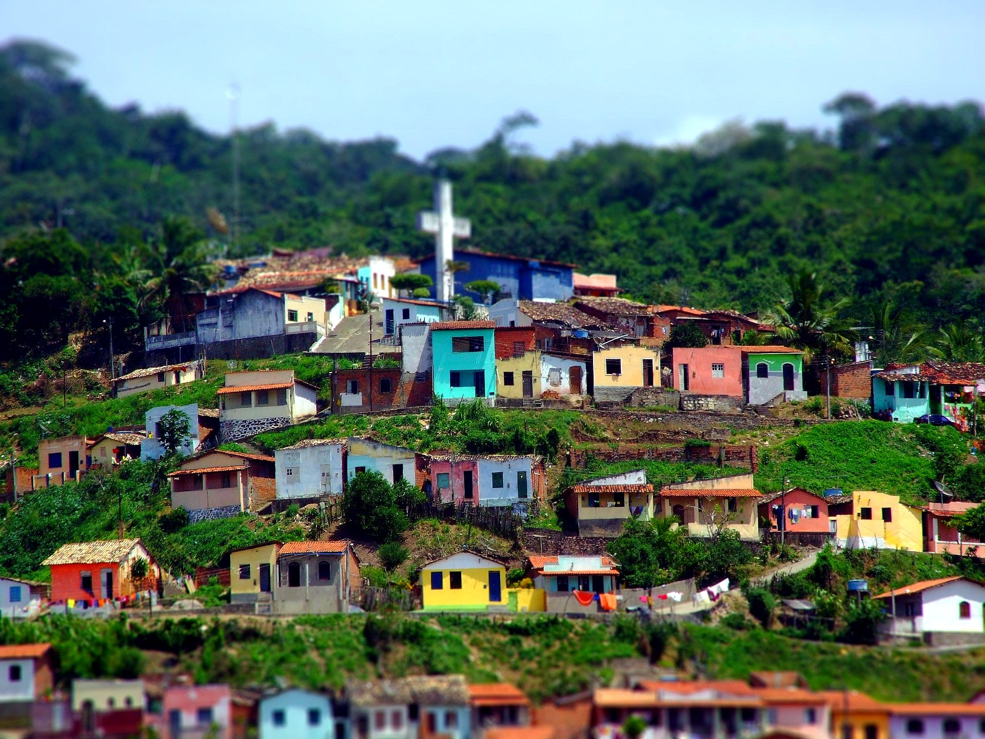 brazil essay paper In this paper, i examine the brazilian experience prior to and during the  karan  jain, thomas jones, and justin vitanza provided excellent research support.
